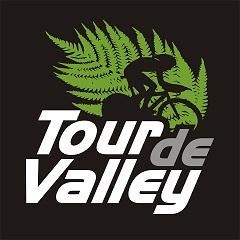 TDV_logo -reduced